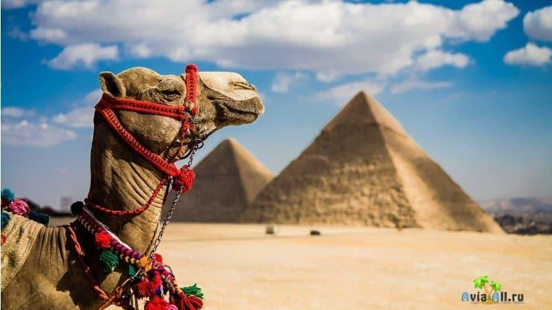 Египет сегодня для туристов