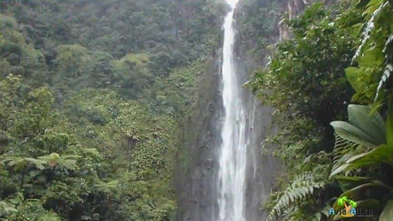 Национальный парк де ла Гваделупа