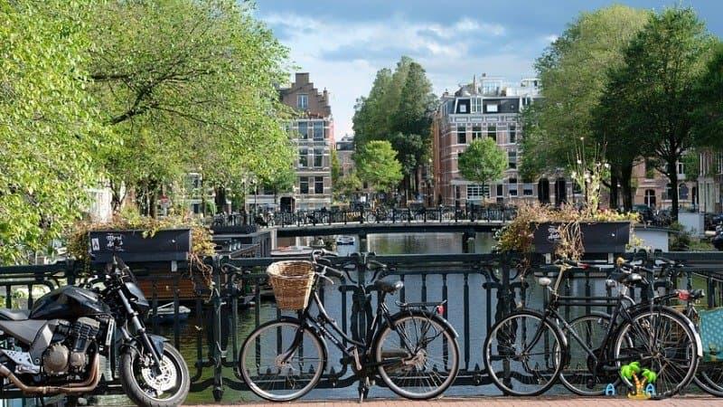Велосипед - любимое голландское средство передвижения