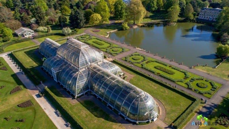 Королевский ботанический сад Кью в Лондоне, фото