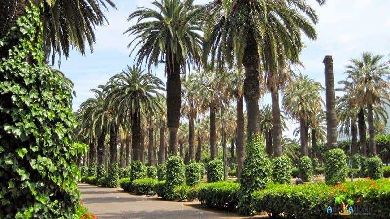 Парк Лиги арабских государств Марокко