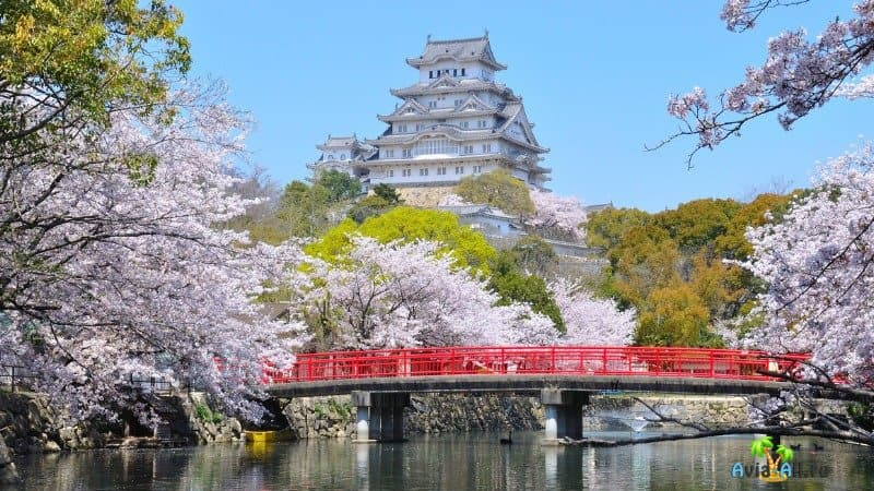 Замок белой Цапли Химедзи Япония