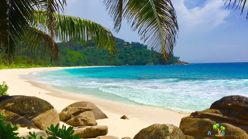 Сейшелы фото пляжей