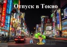 Как организовать отпуск в Токио? Что нужно знать туристу перед посещением Японского города1