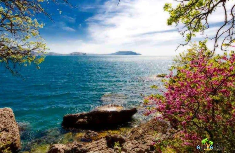 Чем интересен отдых в Крыму весной 2021 и стоит ли ехать?